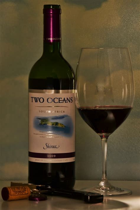 New Hampshire Wine-man: Two Oceans South Africa 2009 Shiraz