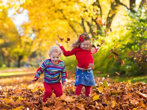 Sage YMCA of Metro Chicago | Kids Fall Fun at the Y