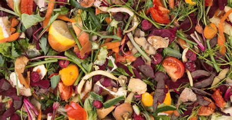 To prevent food waste: reduce, reuse, recycle and rethink