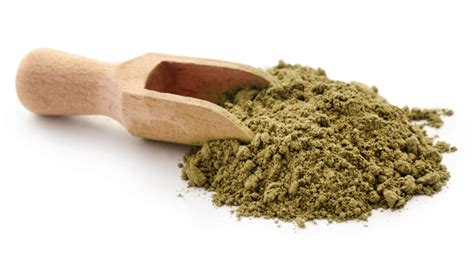 Cassia Obovata ️ Natural Henna Powder For Afro Hair Care