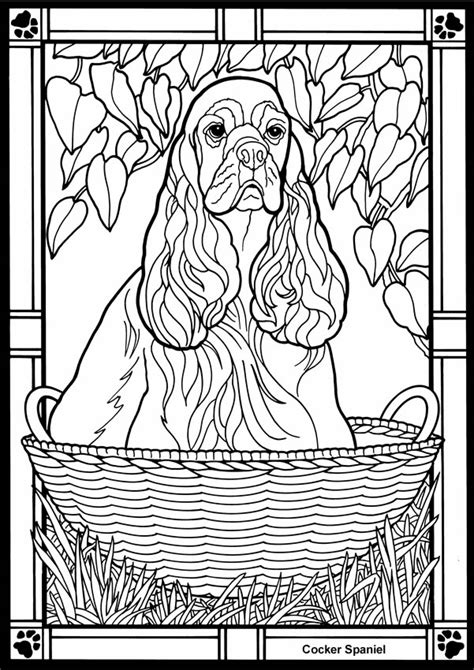 Spaniel coloring, Download Spaniel coloring for free 2019