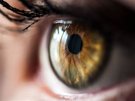 The eyes have it for high blood pressure clues | American