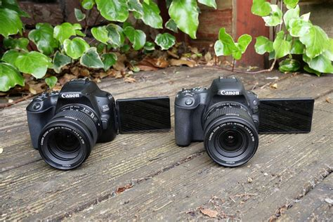 Canon 250D vs Canon 200D: which should you buy? | Trusted
