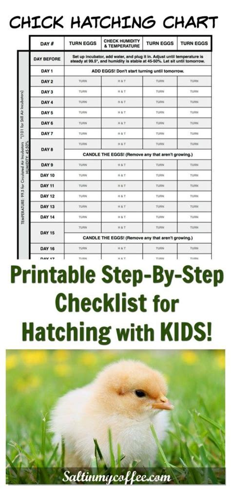 Hatching with kids is so much fun! This printable chart