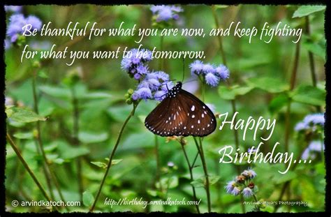 Be thankful for what you are now (Butterfly Happy Birthday