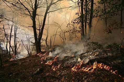 What Are The Differences Between A Ground Fire And A